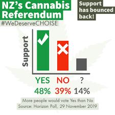 Cannabis referendum confirmed for election day, 19 September 2020 ...